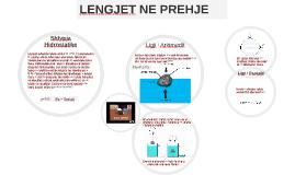 Copy of Copy of Copy of Shtypja Hidrostatike