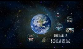 Perdida de la Biodiverisidad
