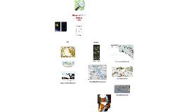 CUIMP - Visualitzadors