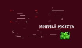 Hortelã-pimeta