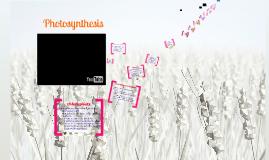 Phototsynthesis