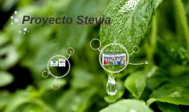 Efectos de la Stevia Rebauidina en pacientes con diabetes me