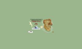 Desarrollo del paso de fauna enfocado  en los osos hormiguer
