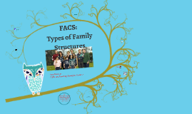HHS Types of Family Structures!