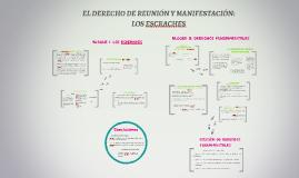 Copy of EL DERECHO DE REUNIÓN Y MANIFESTACIÓN: LOS ESCRACHES