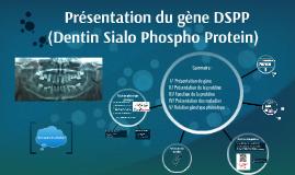 Présentation du gène DSPP