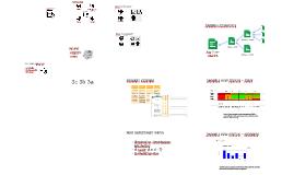 Assessment at NISP