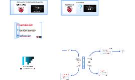 Sistema de Periodización Deportiva