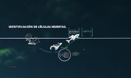 Copy of IDENTIFICACIÓN DE CÉLULAS MUERTAS.