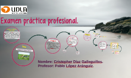 Examen final de práctica profesional.