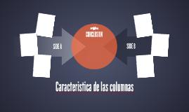 Caracteristica de las columnas