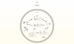 BioAlternativas Model