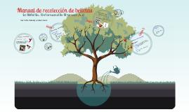 Manual de Recolección de Bellotas
