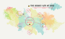 Quotes In The Secret Life Of Bees Captivating The Secret Life Of Bees Bee Quotesam Spralja On Prezi