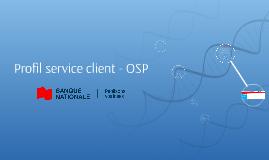 Profil service client