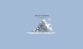 Synod Initiatives