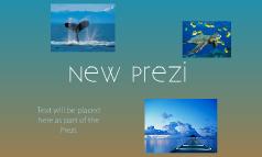 New Prezi