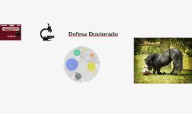 Defesa Doutorado