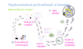 Copy of Physicochemical pretreatment of biomass