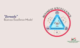 """Bermuda"" Business Excellence Model"