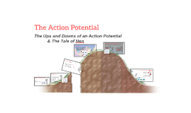 The Action Potential