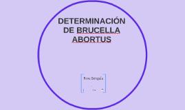DETERMINACIÓN DE BRUCELLA ABORTUS