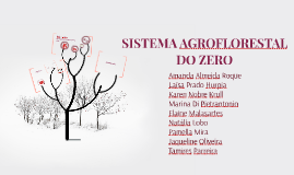 Copy of SISTEMA AGROFLORESTAL DO ZERO