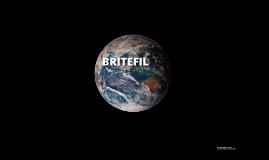 Apresentation BRITEFIL,SA