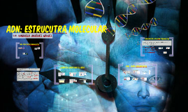Copy of ADN: ESTRUCTURA MOLECULAR