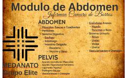 Modulo de Abdomen