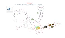 Copy of M.C S.A.S