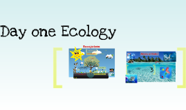 Jill Ecology
