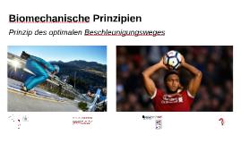 Biomechanische Prinzipien