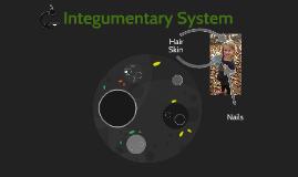 Integuementary System