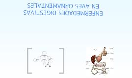 Copy of ENFERMEDADES DIGESTIVAS EN AVES ORNAMENTALES