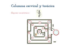 Copy of Columna cervical y torácica