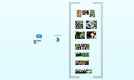 Copy of Unsere nächsten Verwandten - Phylogenetische Stellung der Menschenaffen