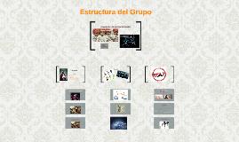 Estructura del Grupo