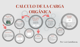 Copy of CALCULO DE LA CARGA ORGÁNICA