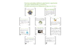 Copy of Entornos Saludables