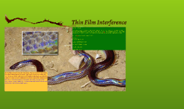 Thin Film Interferance