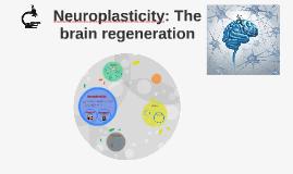 Neuroplasticity: The brain regeneration