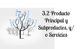 3.2 Producto Principal y Subproductos, y/o Servicios