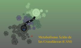 Metabolismo Ácido de las Crasuláceas (CAM)