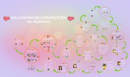 Copy of KALAGAYAN NG AGRIKULTURA SA PILIPINAS