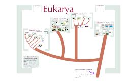 7.3 -  Eukaryotes