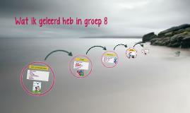 Wat ik geleerd heb in groep 8