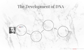 The Development of DNA