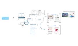 Copy of Identité visuelle d'une marque & déclinaison de son univers graphique : l'identité promotionnelle