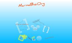 Marinebio.org